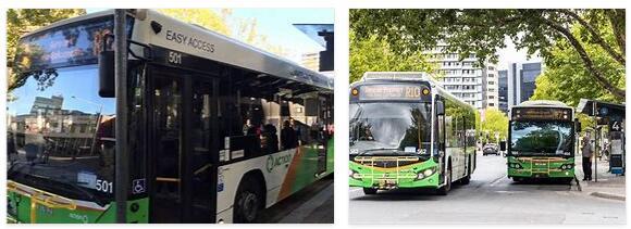 Public Transport Canberra